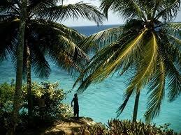 6e582c41aff1c82a97b31844233d5f23--jamaican-music-ocho-rios