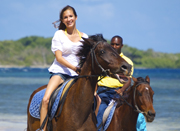 Braco Stables In Falmouth,Jamaica